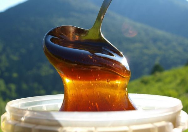 Гречишный мёд в ложке