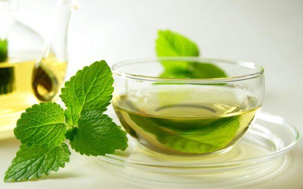 Зелёный чай в прозрачной чашке на блюдце и веточка мяты