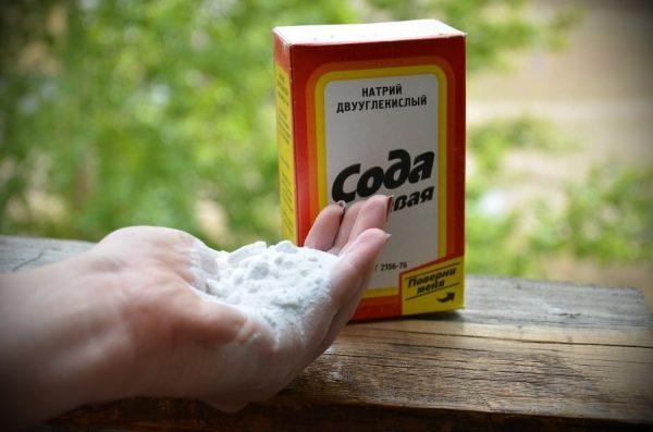 Сода в упаковке и на руке