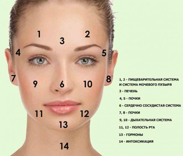 Точки на лице, связанные с внутренними органами
