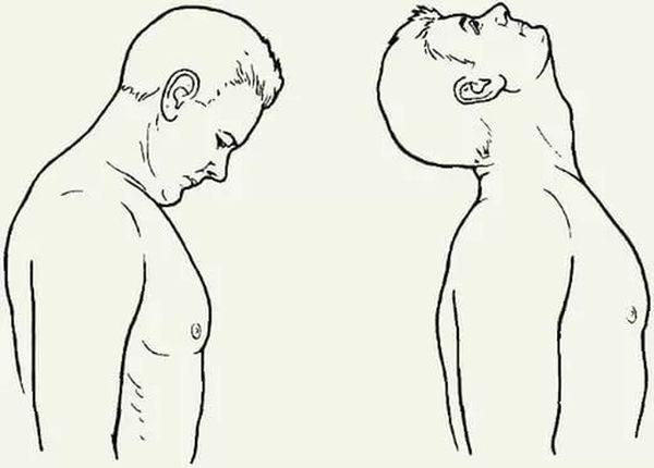 Движения головы вперед-назад