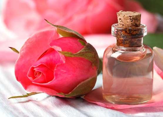 Роза и масло розы