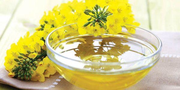 Рыжиковое масло и цветы рыжика