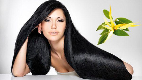 Красивые волосы и иланг-иланг