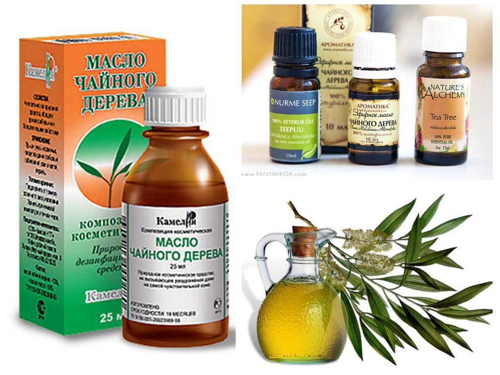 Облепиховое масло при беременности: как использовать от растяжек, при геморрое, молочнице, противопоказания, отзывы