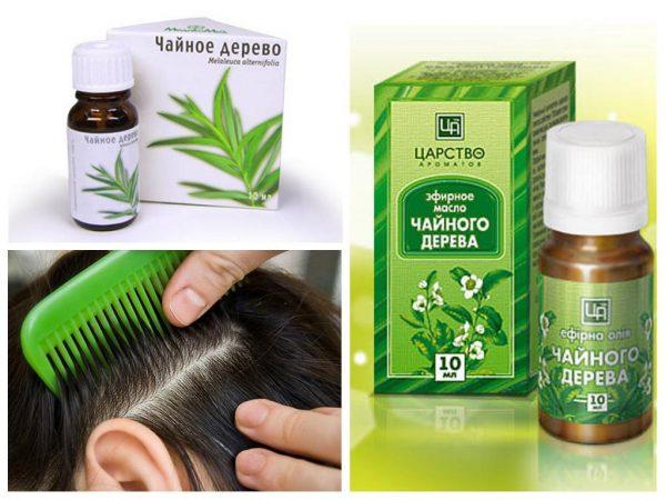Масло чайного дерева для волос и лечения дерматологических проблем кожи головы