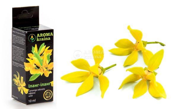 Масло и цветы иланг-иланга