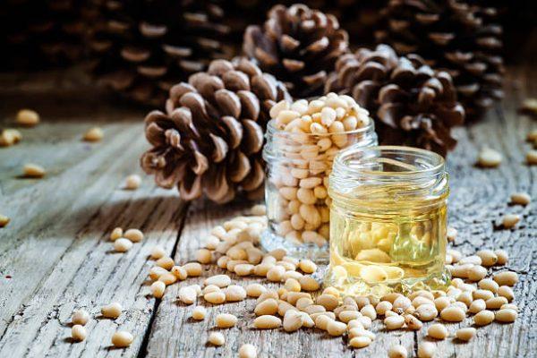Масло кедровых орехов и шишки