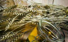 Банка масла и колосья пшеницы