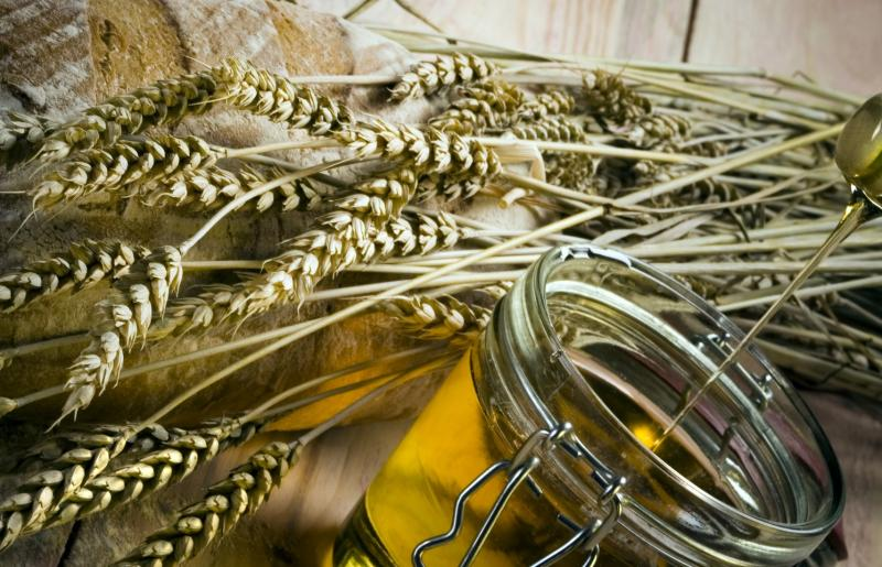 Масло зародышей пшеницы: свойства и польза. масло зародышей пшеницы для лица, волос (маски) и от растяжек