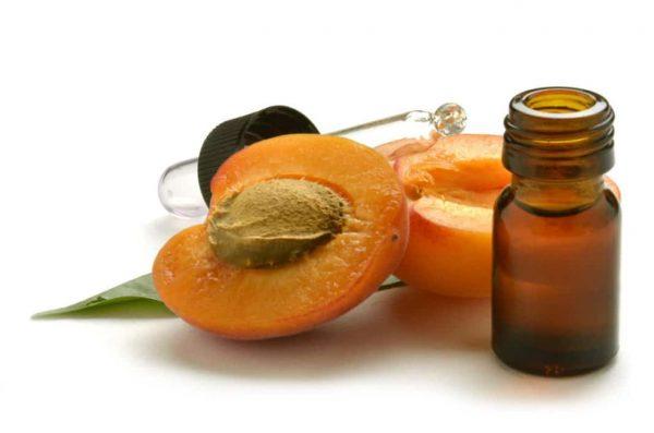 Масло абрикоса и плод в разрезе