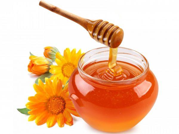 Лечение кишечника оливковым маслом