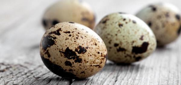 Перепелиные яйца на деревянной поверхности