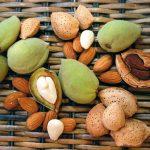Плоды, косточки и ядра миндаля