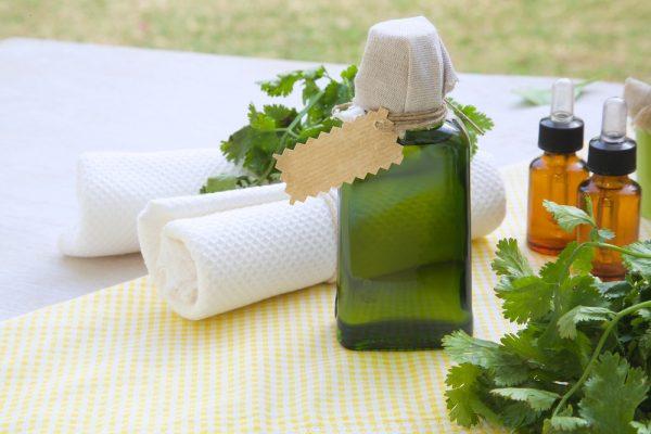 Эфир кориандра в стеклянных сосудах и растение