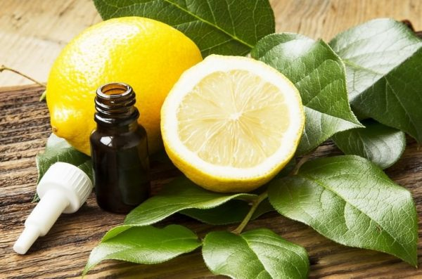 Эфир лимона и плоды в разрезе