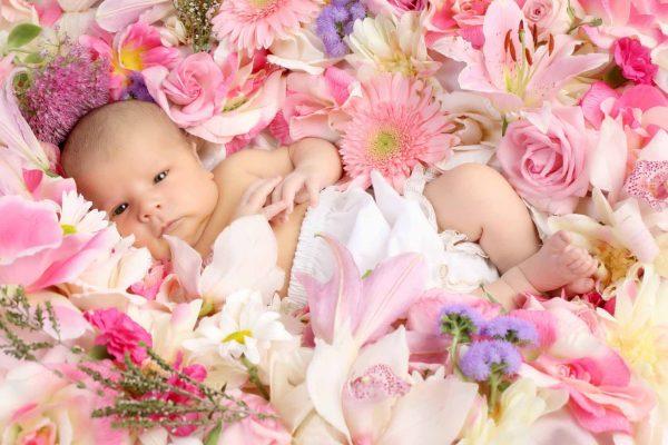 Грудничок лежит среди цветов