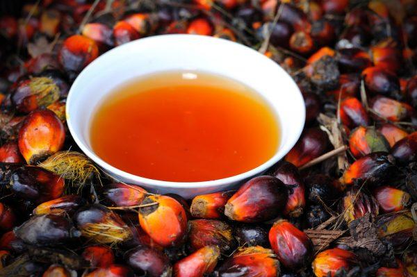 Пальмовое масло в белой пиале