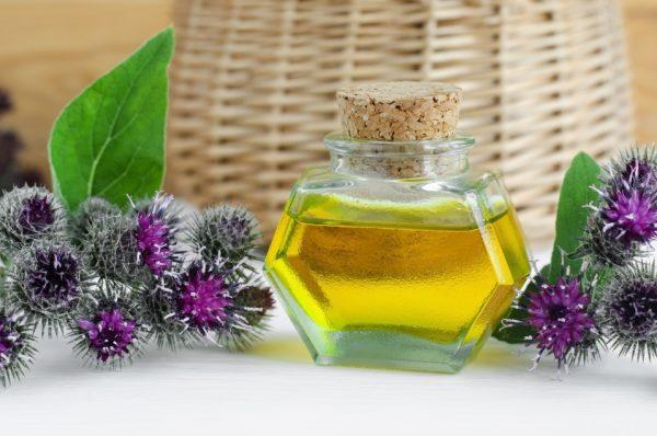 Репейное масло и цветы лопуха