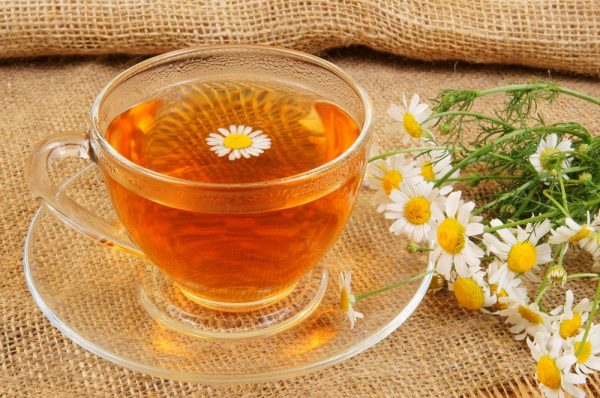 Настой цветков ромашки в чашке и растение