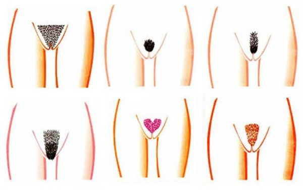 Цветной бикини-дизайн