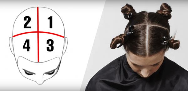 Схема разделения волос на четыре части