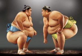 Два борца сумо
