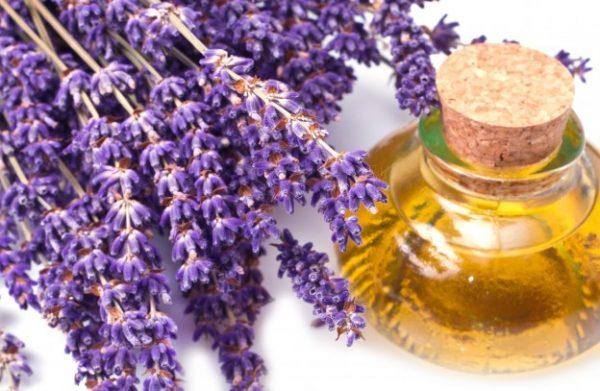 Цветки лаванды и лавандовое масло