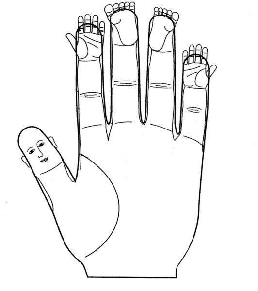 Зоны соответствия на пальцах рук
