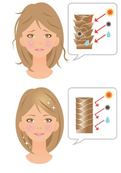 Приглаженные чешуйки волос