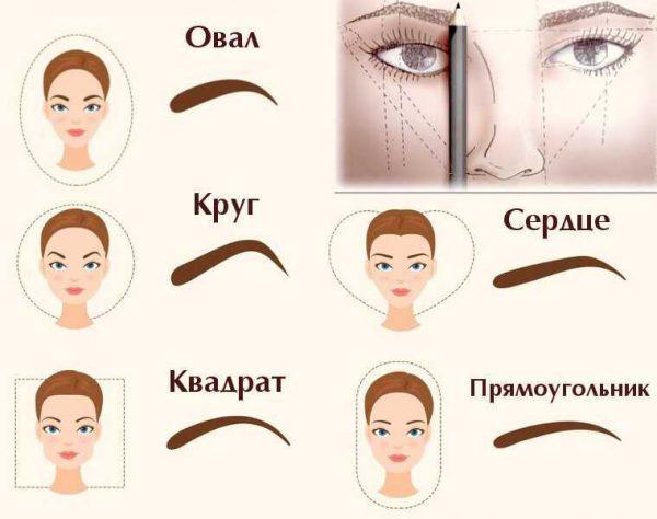 Типы лица и линия бровей
