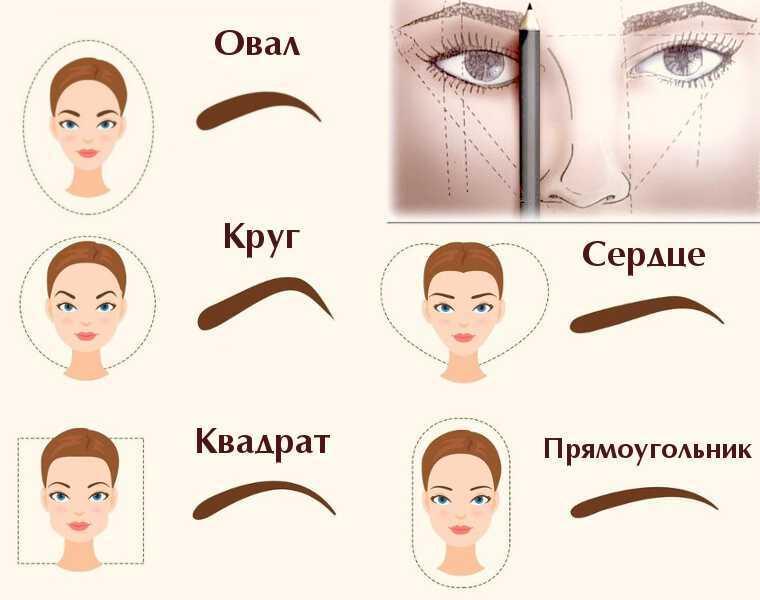 Брови – как правильно придать форму по типу лица (с фото)? Правильная форма бровей